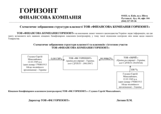 Схематическое изображение структуры собственности